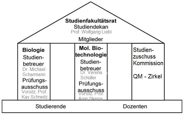 Übersich über die Organisation der Studienfakultät Biowissenschaften. Infos zum Studienfakultätsrat, der Studienzuschusskommission und dem QM - Zirkel findet ihr weiter unten im Text.