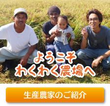 ようこそわくわく農場へ。新潟県産コシヒカリ生産農家のご紹介ページはこちら