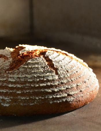 ehrlich gebackenes Brot