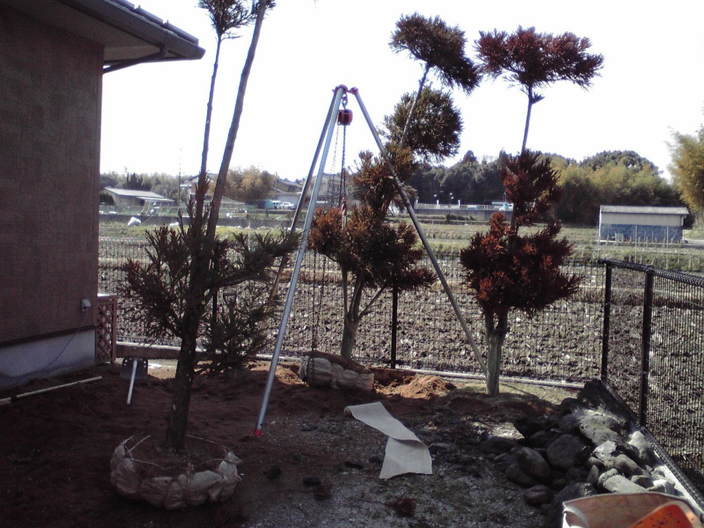 既存樹堀取・移植 造園・外構・エクステリア工事@奈良県北葛城郡広陵町