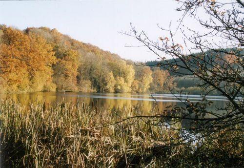 Immerather Maar im Herbst