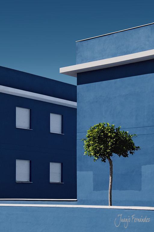Arquitectura y Natura Juanjo Fernández