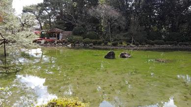平安神宮の池の画像