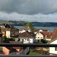 Wunderbare Aussicht Bei der Fensterladen Reinigung in Erlenbach