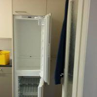 Eingeweide Entfernung des Kühlschrankes zur Reinigung