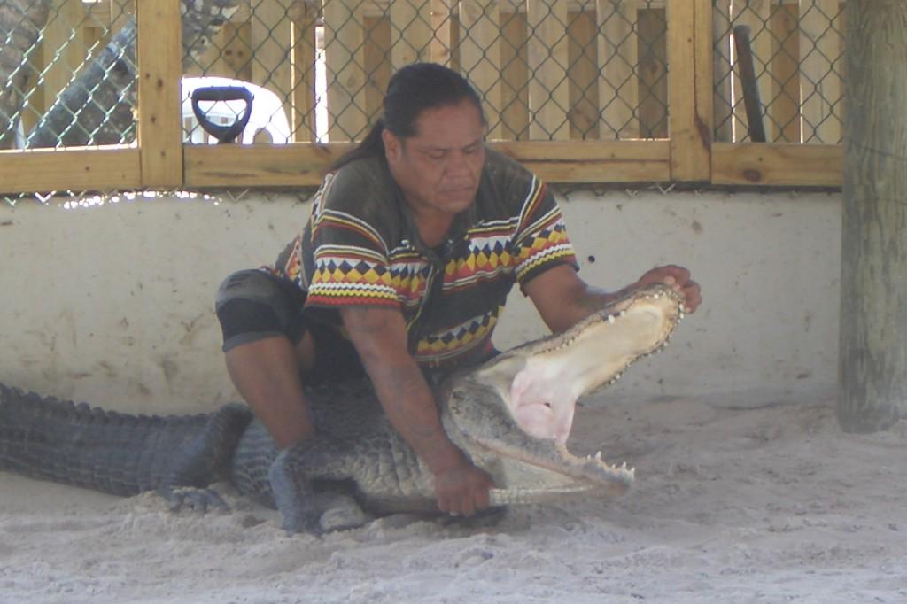 """Auf die Frage, wie lange man mit dem Aligator trainieren muss um so etwas machen zu können antwortete der Indianer:"""" Das kann man nicht trainieren! Diesen Alligator haben wir vor 4 Tagen gefangen."""""""