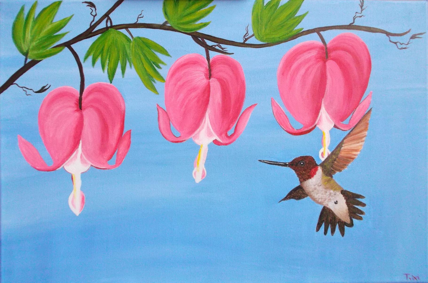 Der Kolibri umtanzt das tränende Herz....