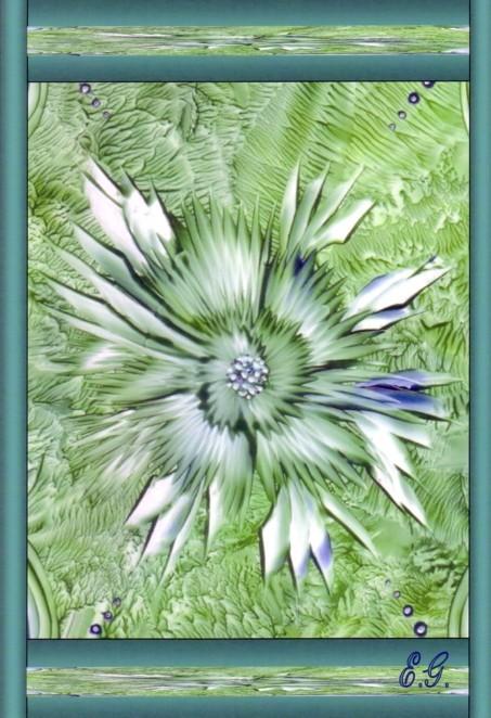 Eine wundervolle Blüte führt zur Mitte...