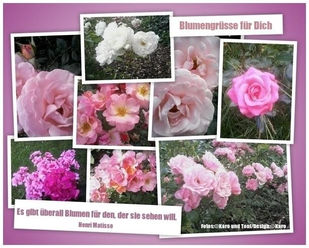 Wundervolle Blumen von Karo