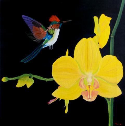 Patricia Leuschens Orchideen strahlen und der Vogel singt...