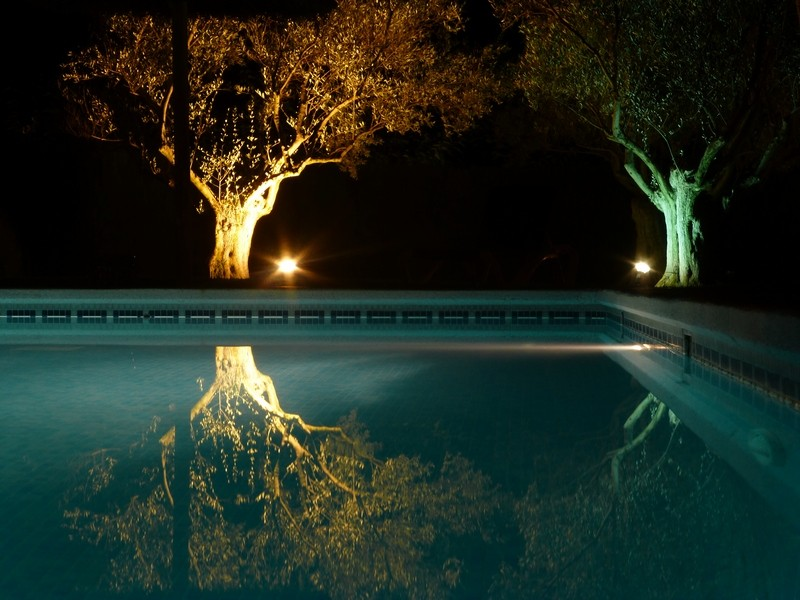 Und noch ein letztes Mal der Finca-Pool
