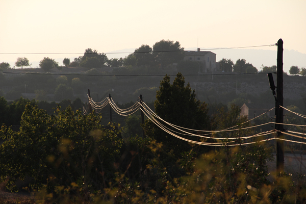 Idyllische Stromleitungen in Son Macia