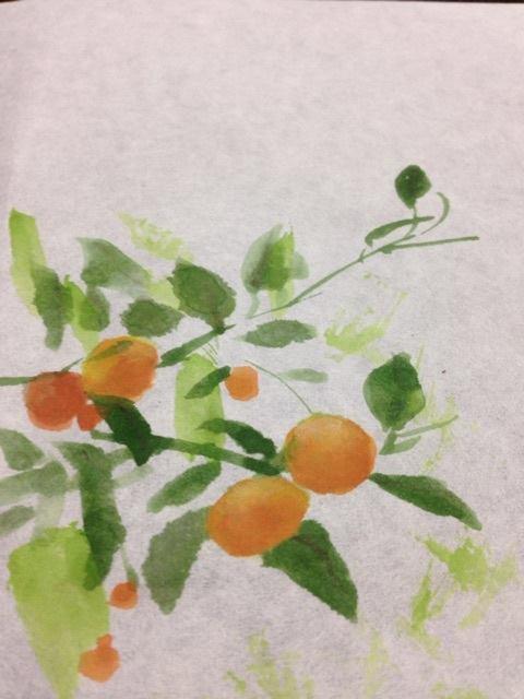 《日本画》橘(たちばな) 顔彩