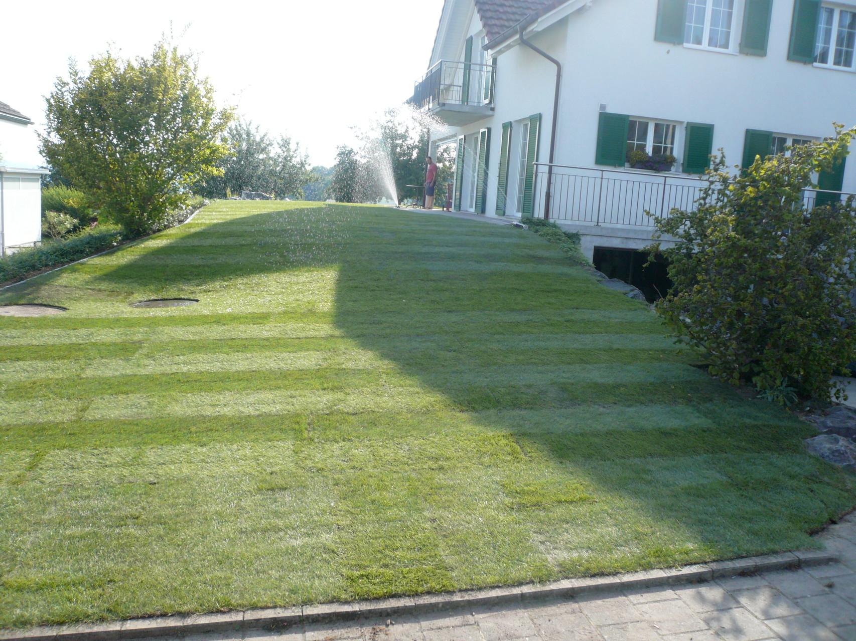 ...geschafft! 165 m2 Rasen in einem Tag verlegt