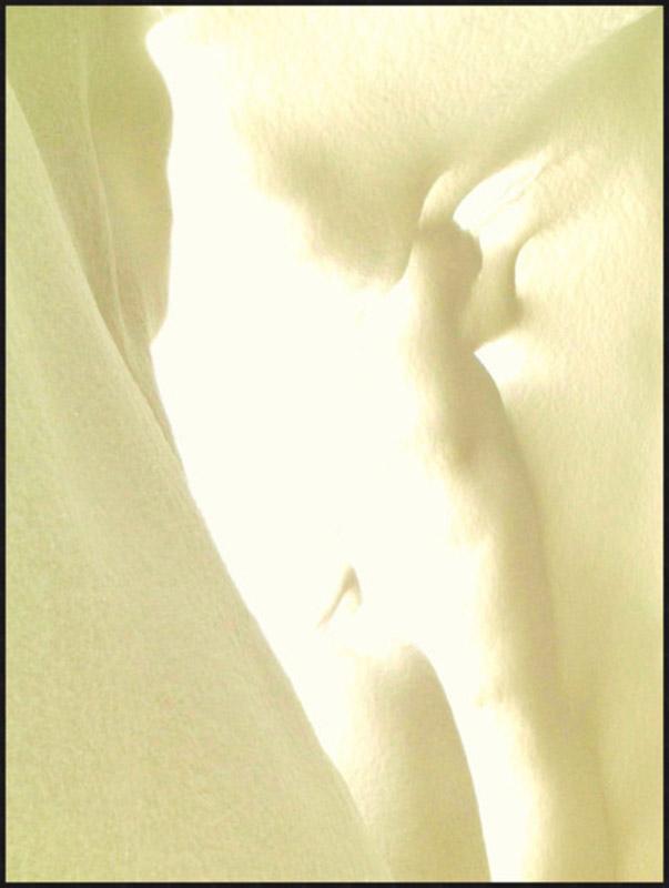 snowbody #1, C-Print Diasec, 80x60cm