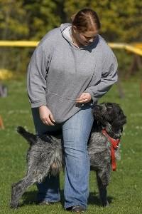 Trick Dog mit Judith und Blitz