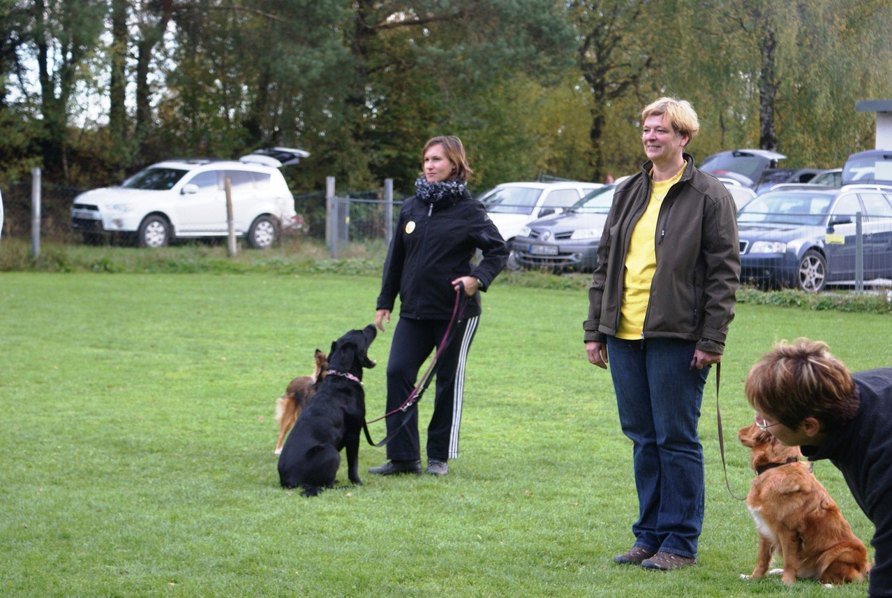 Nicki (rechts) wurde mit Amy Dritte!
