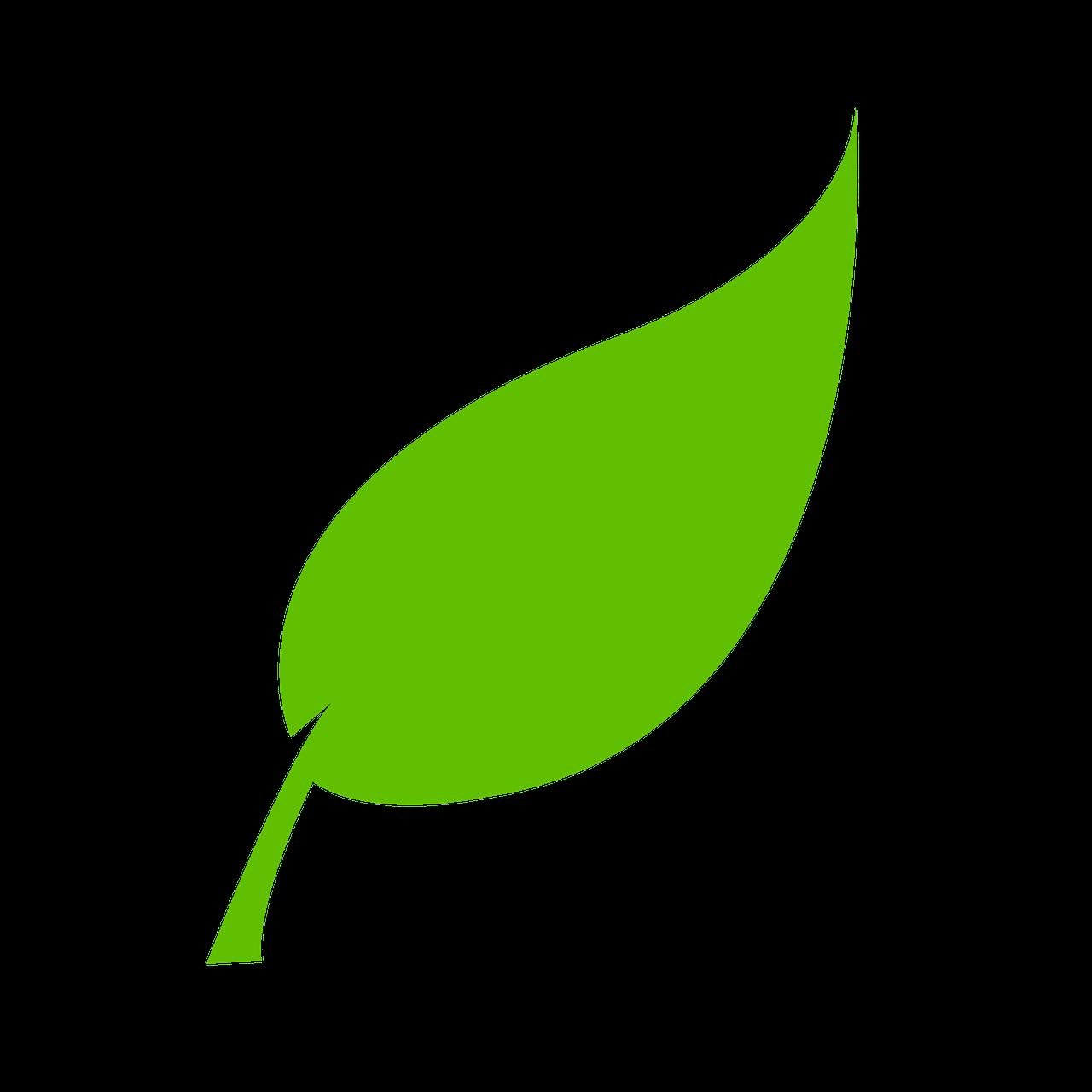 Pourquoi, nous, militants d'Europe Écologie Les Verts, rejoignons la liste OUI LA PROVENCE ?