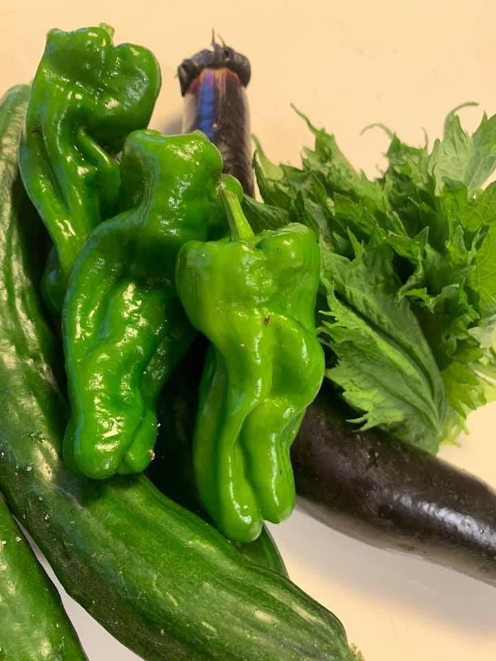 地元でとれた手作り夏野菜