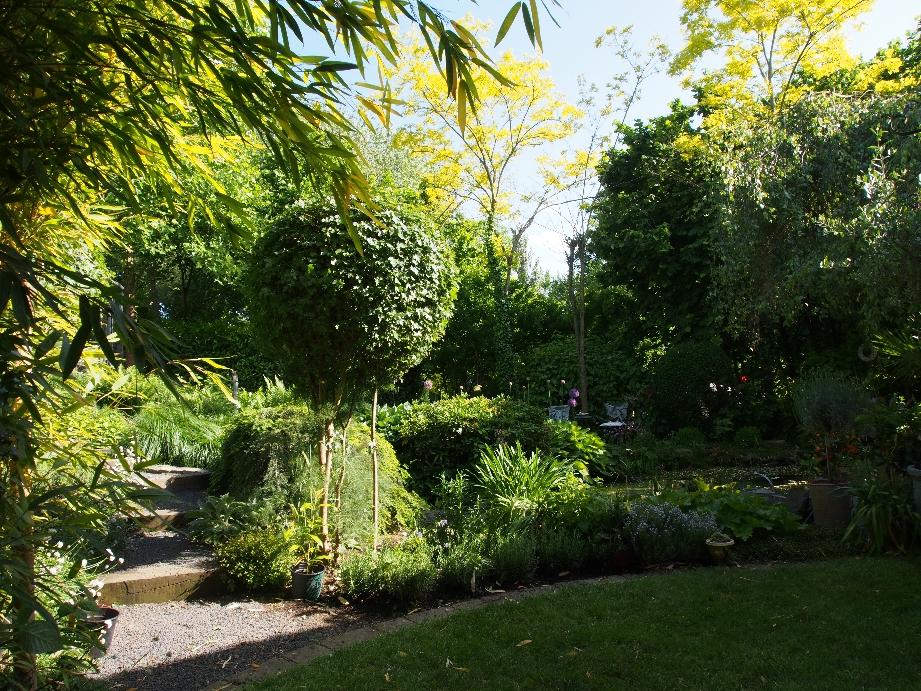 Treppe zur Aussicht auf Romantik  wie Zypressen, Waldlandschaft, das Auge will wandern.