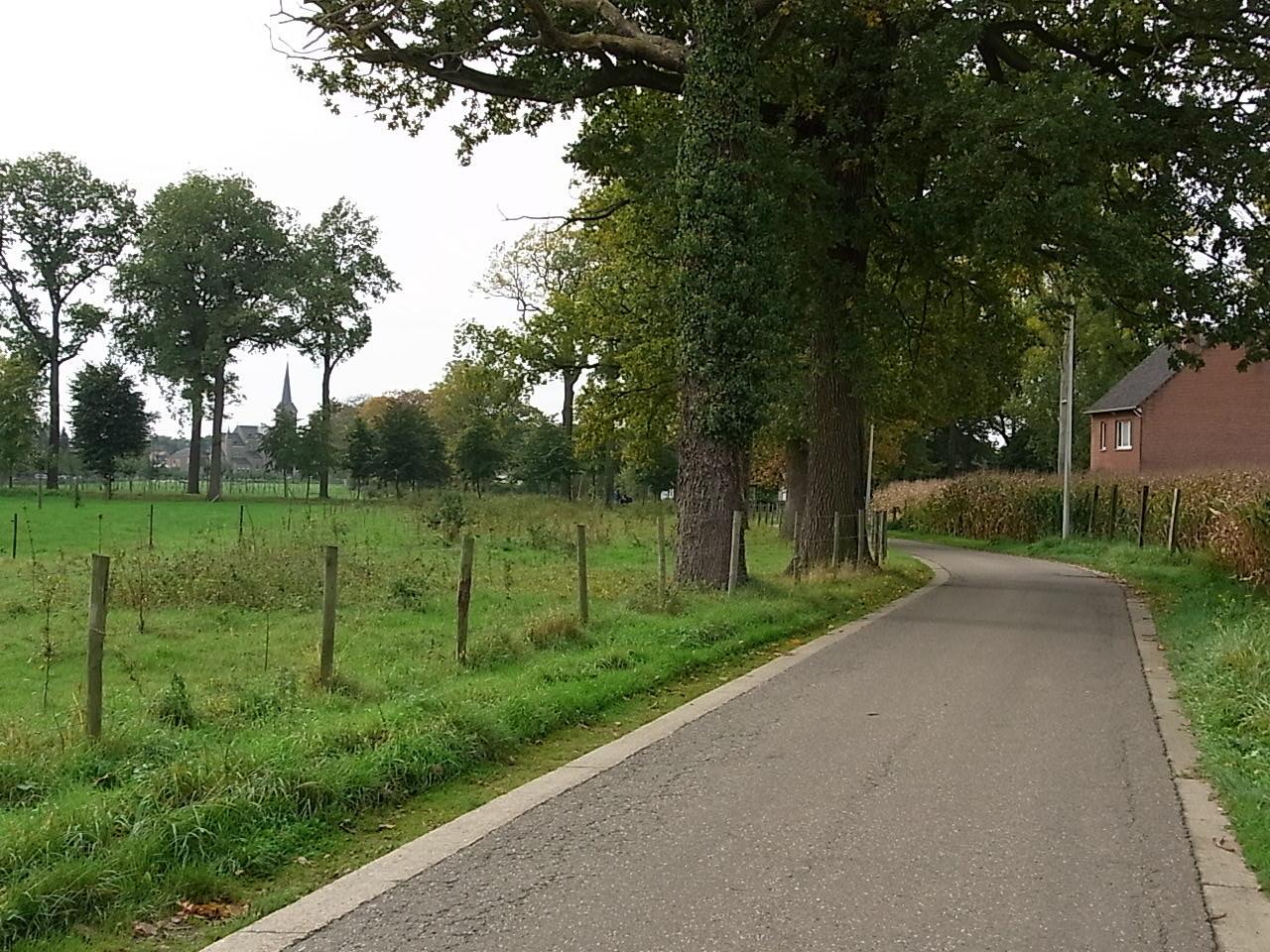 Straße bei Leut