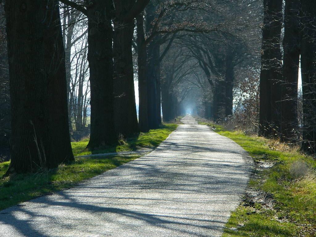 Straße entlang des Nederweert-Helmond Kanals