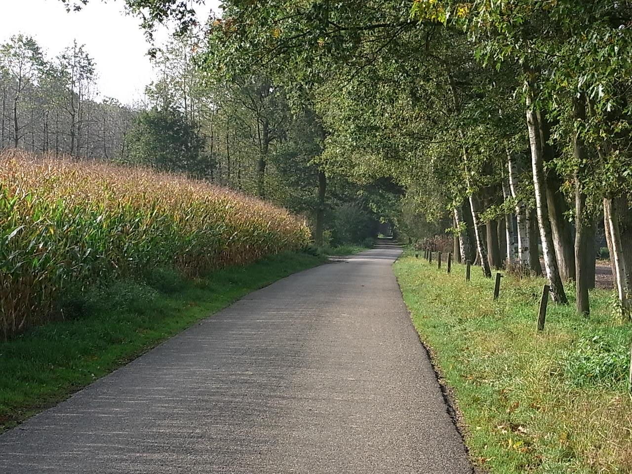 Wunderschöne Strecken mitten im Grünen
