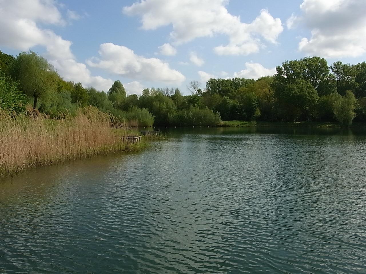 Ein Baggersee in Limburg