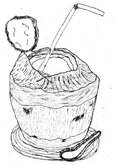 自著「Coconut Water」より