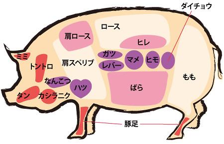 豚部位図解