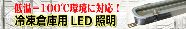 低温―100℃対応 LED投光器 OG-LED220-GSF
