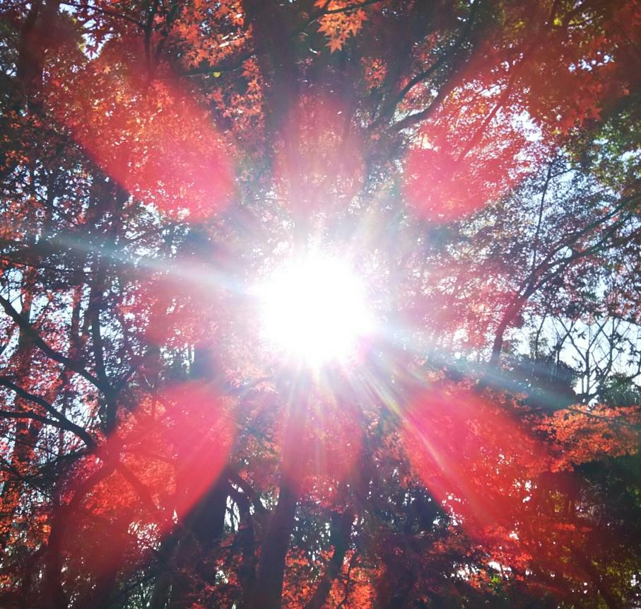 太陽のイメージ