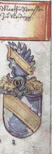 Das Wappen der Strasser von Neidegg auf der Salzburger Landtafel