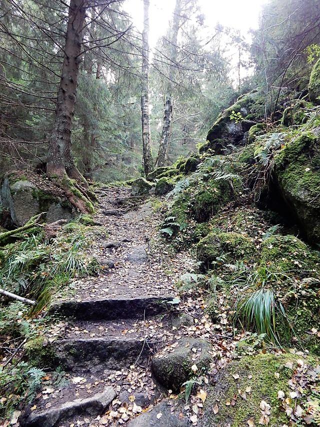 Wandern zur Steinernen Renne