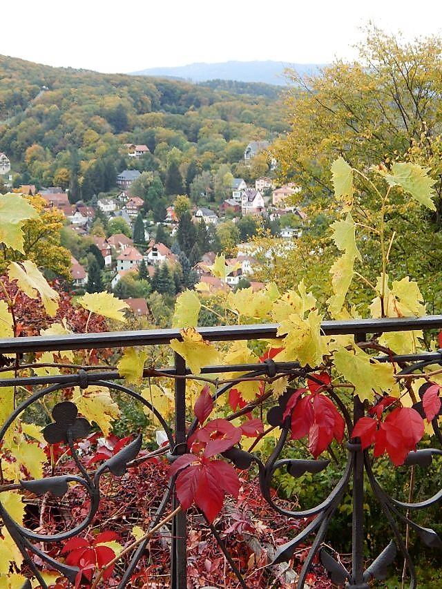 Blick vom Wernigeröder Schloss auf Wernigerode