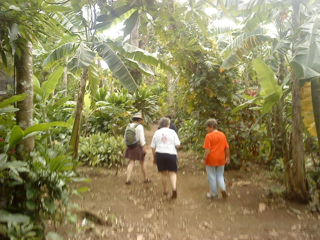 Our tour in las Isletas