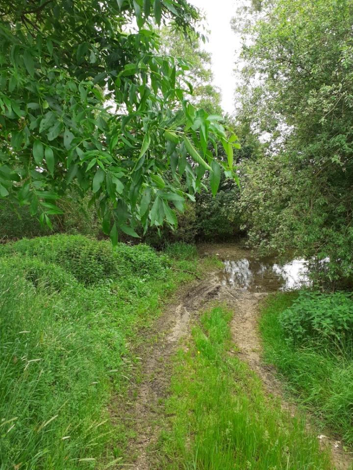 Passage délicat entre Champougny et Taillancourt