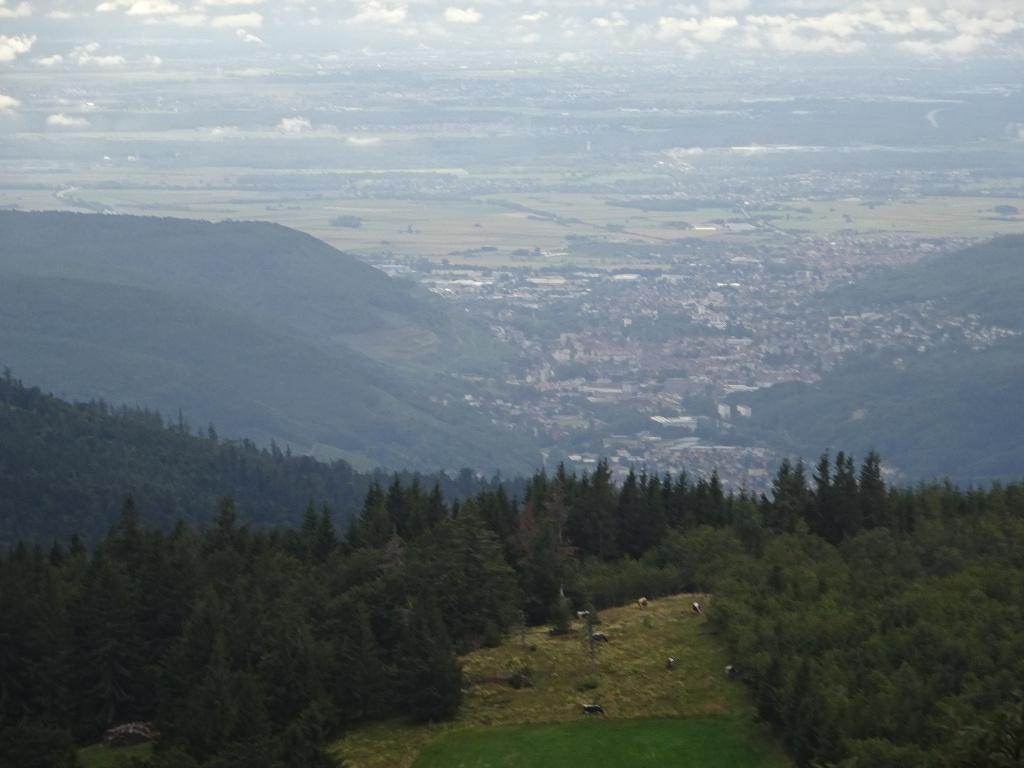Côté Alsace