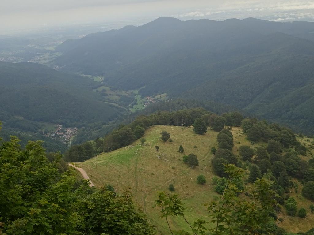 Côté Vosges