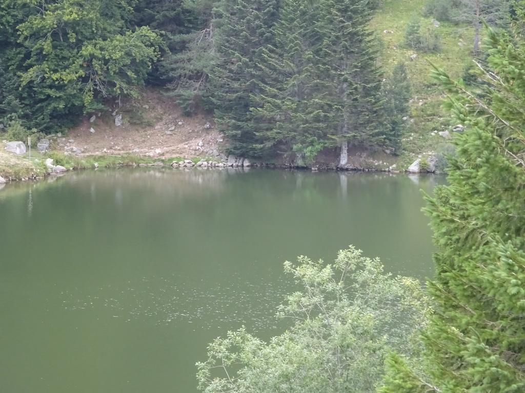 Lac des Truites (ou du Forlet)