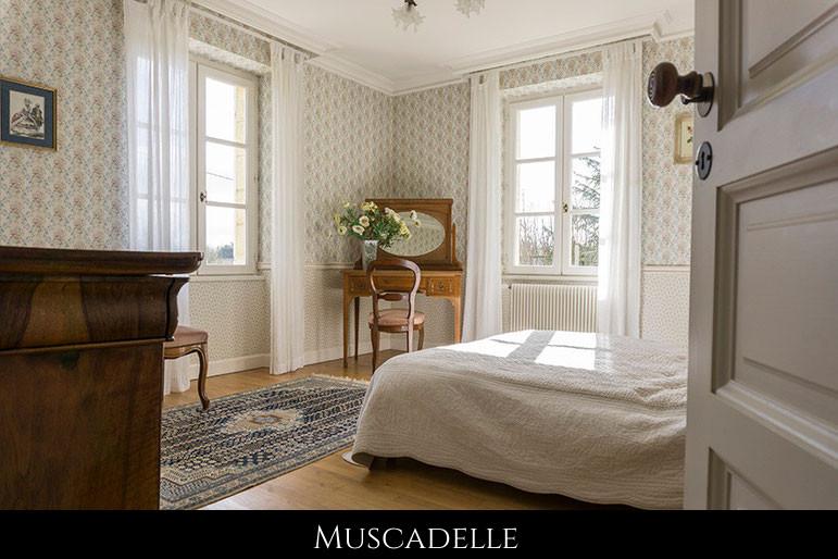 Chambre d'hôte Merlot