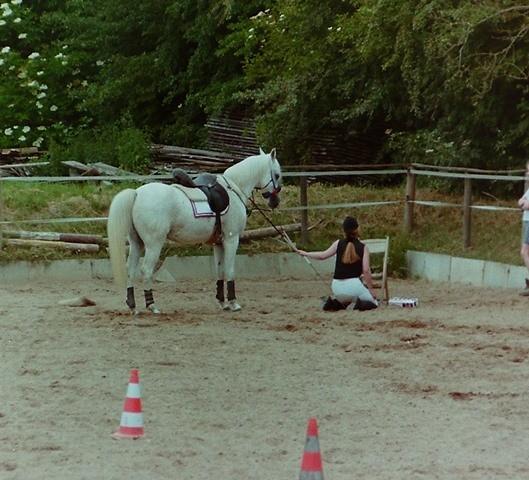 FRT 1999 Hof Larsson, Action-Parcour