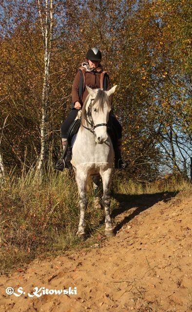 04.11.2015 mit Katha in der Kieskuhle