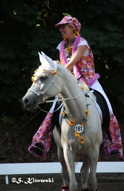 Breitensportturnier Bad Segeberg 2012