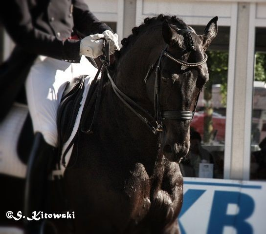 Maik Kohlschmidt auf Blue Horse Hotline - Platz 4