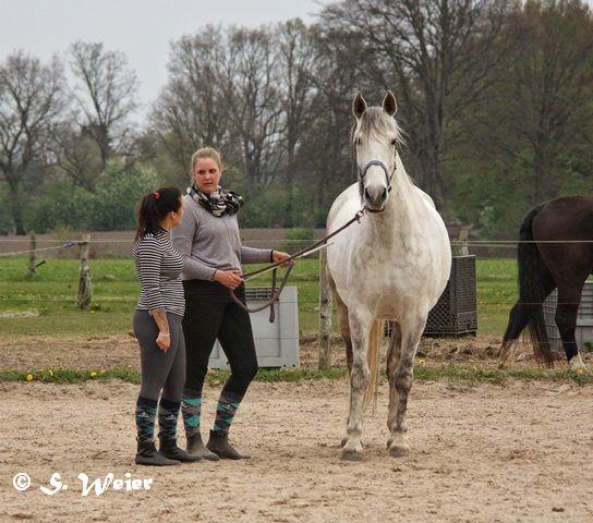 Katha erklärt Janine die richtige Longenführung.