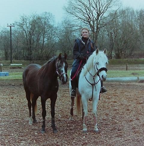 Mutabor, Wamiiq und ich, 2004