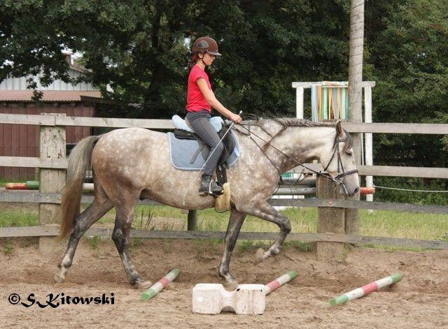 30.07.2011 - Sina und Momo bei der Stangenarbeit