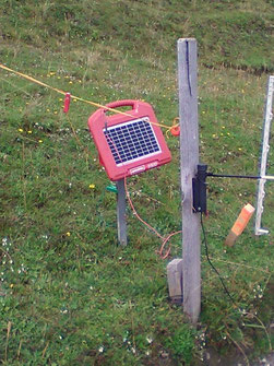 Electric pasture fences with a solar system enable a continuous electrical voltage, but the circuit is only closed when the animal comes into contact with the pasture fence operated by solar power.