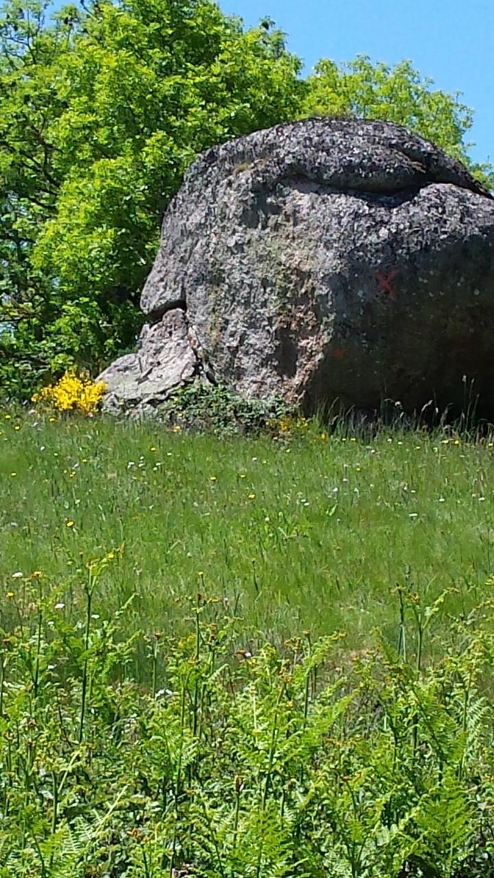 Un rocher en Margeride, Centre La Margeride Saugues, Haute-Loire
